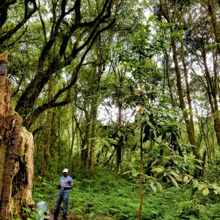 Our guide Sironga posing in the Lush rainforest